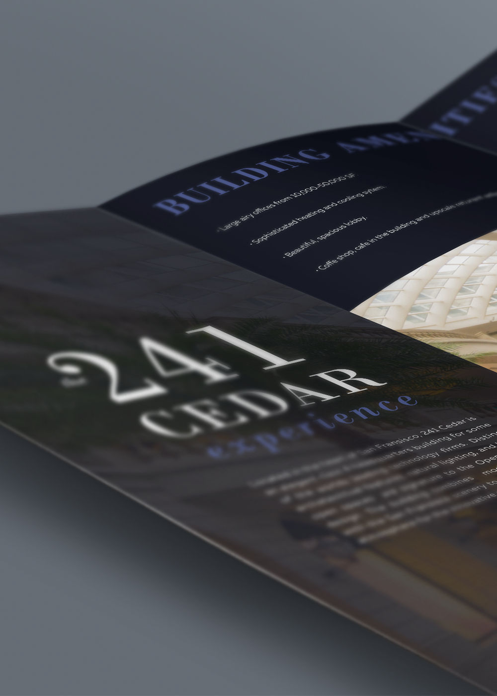 Cedar Developments Brochure - iDesign Branding